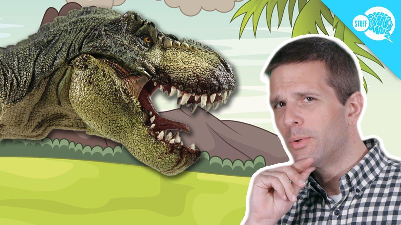 Dinosaur Know You More