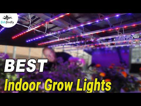 Best indoor grow lights 2019 iphone 8 plus phone holder