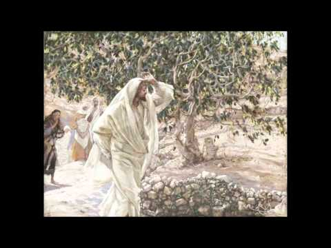 Притча о работниках в винограднике Толкование и текст притчи