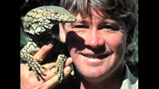 Steve Irwin - My Heart Will Go On Thumbnail