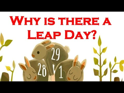 Why Is There Leap Day Why Does Leap Year Have Days Leap Year Google Doodle