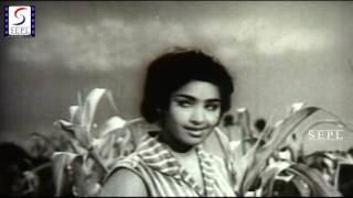 Nalla Neelam From Movie Veevasayee
