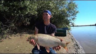 Ловля САЗАНА на новом ДИКОМ острове Рыбалка на макушатник жмых закидушку