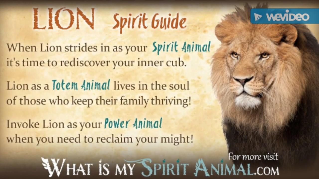 The Totem animal and spiritual animal the Lion