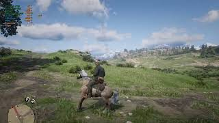 Red Dead Redemption 2 | GTX 1060 | i7 4790 - Optimal Settings