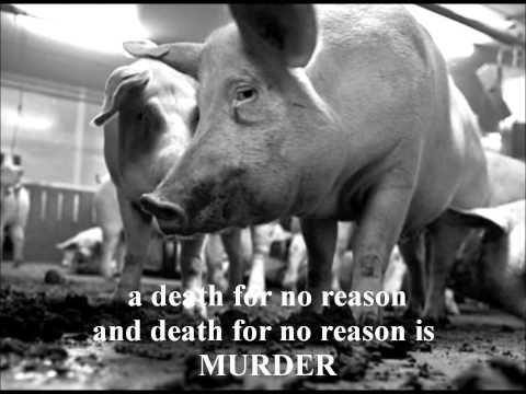 The Smiths - Meat Is Murder (Lyrics)