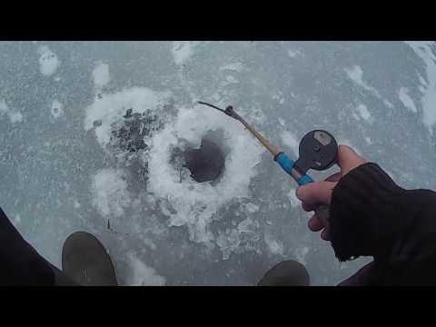 видео: Ловля ротана по первому льду