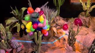 Cactus Maze 1 | Killer Karaoke