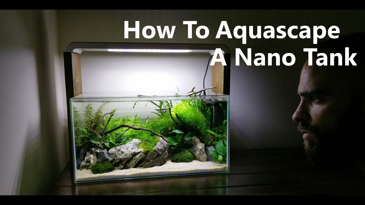 How To Aquascape A Nano Fish Tank Youtube