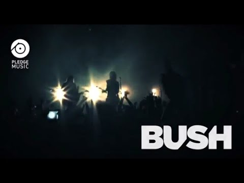 BUSH - Pre-Order the New Album on PledgeMusic Mp3