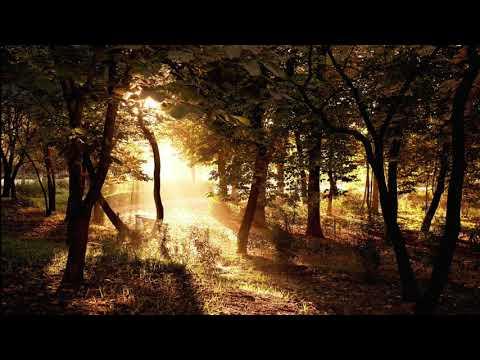 Nickelback - After the Rain [Traduzione ITA]