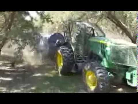 Almond Harvest in California