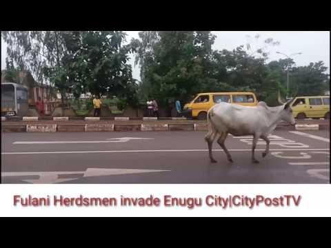 FULANI HERDSMEN INVADE ENUGU CITY   CityPost TV