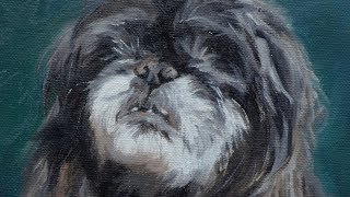 "Dog portrait, oil painting of ""Bunny"" time-lapse, speed-painting"