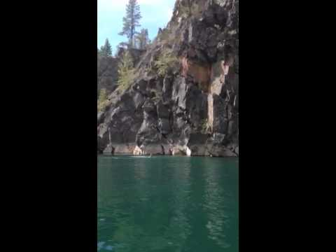 Jumping off big cliff into water - YouTube