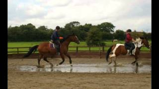 Gold Camp 2012 Willow Farm Equestrian Centre