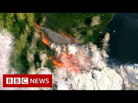Australian State Declares Bushfire Emergency - BBC News