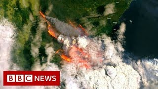 Australian state declares bushfire emergency - BBC News