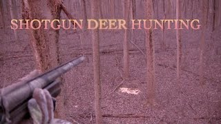 Shotgun Deer Hunt