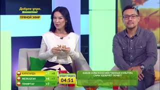 Доброе утро, Казахстан! Выпуск от 24.10.2017