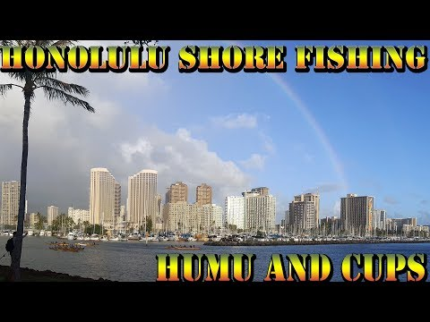 Fishing in Honolulu Oahu - Catching Starbucks Cups and Curry Udon - Hawaii Shore Fishing - BODS 47