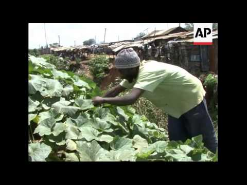Organic farming out of Kenya's poorest area