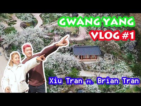 Vlog#1 ► Lễ Hội Hoa Mơ Gwang Yang Hàn Quốc  || Xiu Tran Vlog Ft. Brian Tran