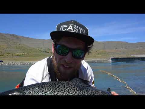 20+lb Salmon On 4lb In Twizel Canal New Zealand!?
