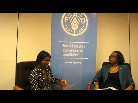 FAO Interview