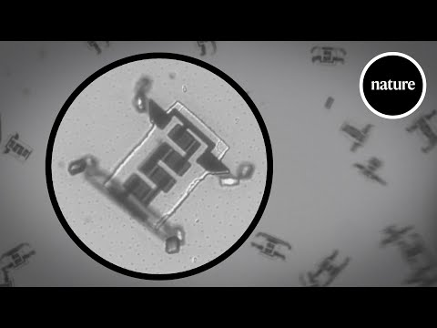 March of the microscopic robots