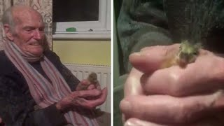 Dad With Dementia Has A Duckling Friend