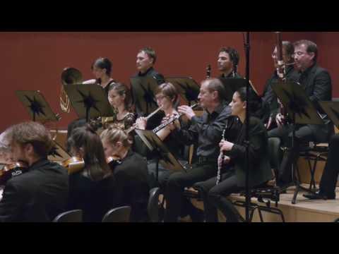Kammerorchester Basel - Ludwig van Beethoven: Sinfonie Nr. 2 - 4. Allegro molto