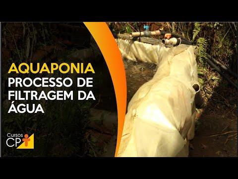 Clique e veja o vídeo Aquaponia: saiba por que o processo de filtragem da água é important