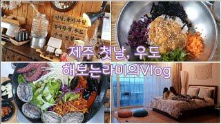 vlog #26 제주, 우도, 성산일출봉, 성게 비빔밥…