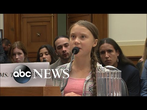Tim Moore - Teen Climate Activist Tells Congress To Wake Up