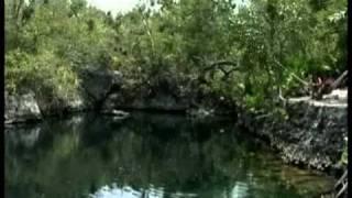 Kuba: Halbinsel von Zapata  / Cuba: Zapata Peninsula - Reise-Video / travel clip