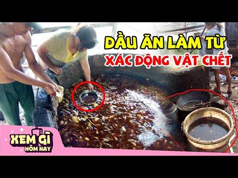 Dầu Ăn Làm Từ X.Á.C Động Vật - 7 Thực Phẩm GIẢ Mà Trung Quốc Đã Trà Trộn Vào Việt Nam