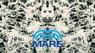 Fundacja MARE
