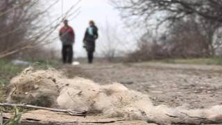 Планета АГРО - Переаботка биосырья в Ейском районе