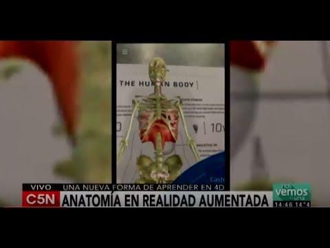 C5N - Tecnología: Anatomy 4D, original forma de aprender anatomía ...