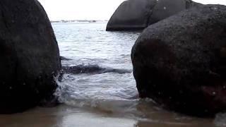 O murmúrio do mar