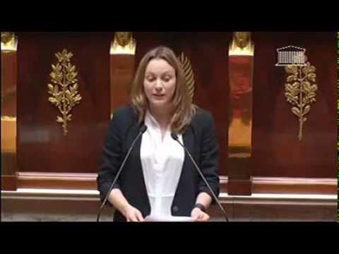 Intervention d'Axelle Lemaire pour le vote solennel sur l'égalité femmes-hommes - 28 janvier 2014