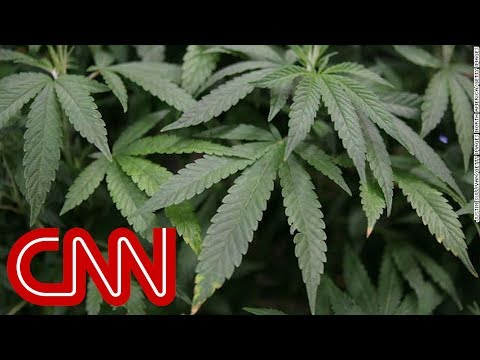 Why legalizing marijuana is stuck in legal limbo Mp3