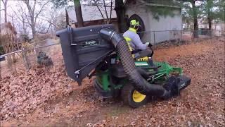 Protero PV 18 vs.  Damp Oak Leaves