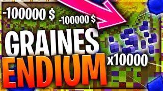 J'AI DÉPENSE 10.000.000 $ POUR AVOIR 1.000 GRAINES D'ENDIUM ...!