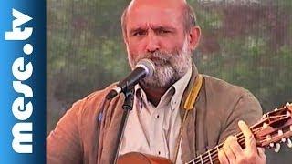 Gryllus Vilmos: Maszkabál - Kalóz (dal, koncert felvétel) | MESE TV