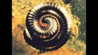 Nine Inch Nails-Closer (Deviation)