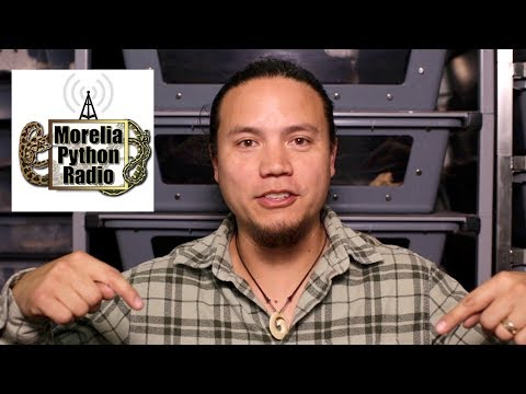 Morelia Python Radio Interview