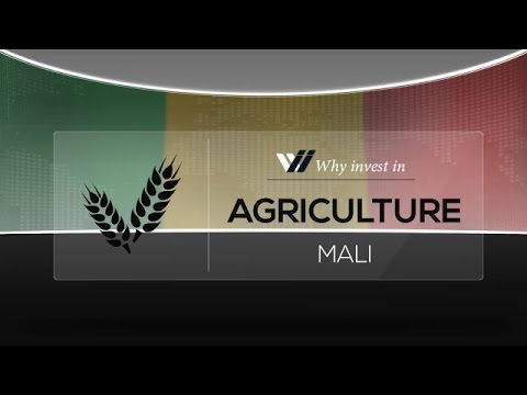 Agriculture  Mali - Why invest in 2015