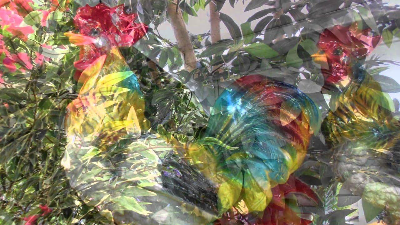Искусственные деревья Украина Декоративные купить для интерьера .